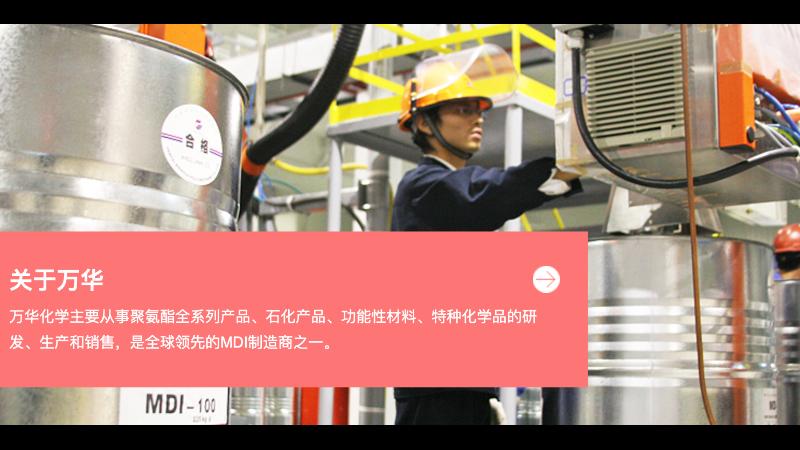 烟台万华化学集团设备资产管理系统