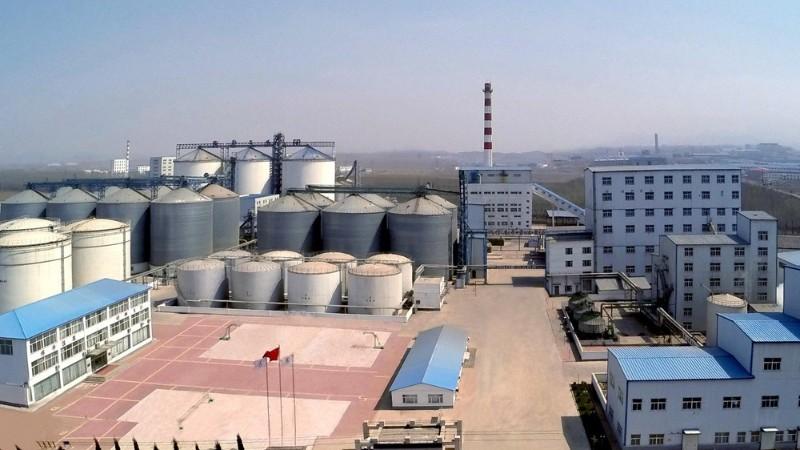 中粮东洲粮油公司设备资产管理信息系统